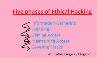 phases and steps of ethical hackinh