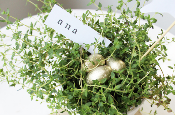 DIY Gifts: Herb Pots by Eliza Ellis
