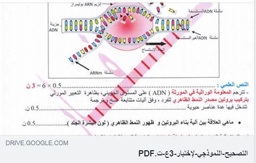 فروض الثانية باكالوريا علوم:فرض أول في الخبر الوراثي مع التصحيح