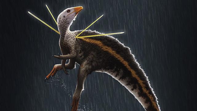 Nova espécie de dinossauro encontrada no Ceará é descrita por pesquisadores estrangeiros