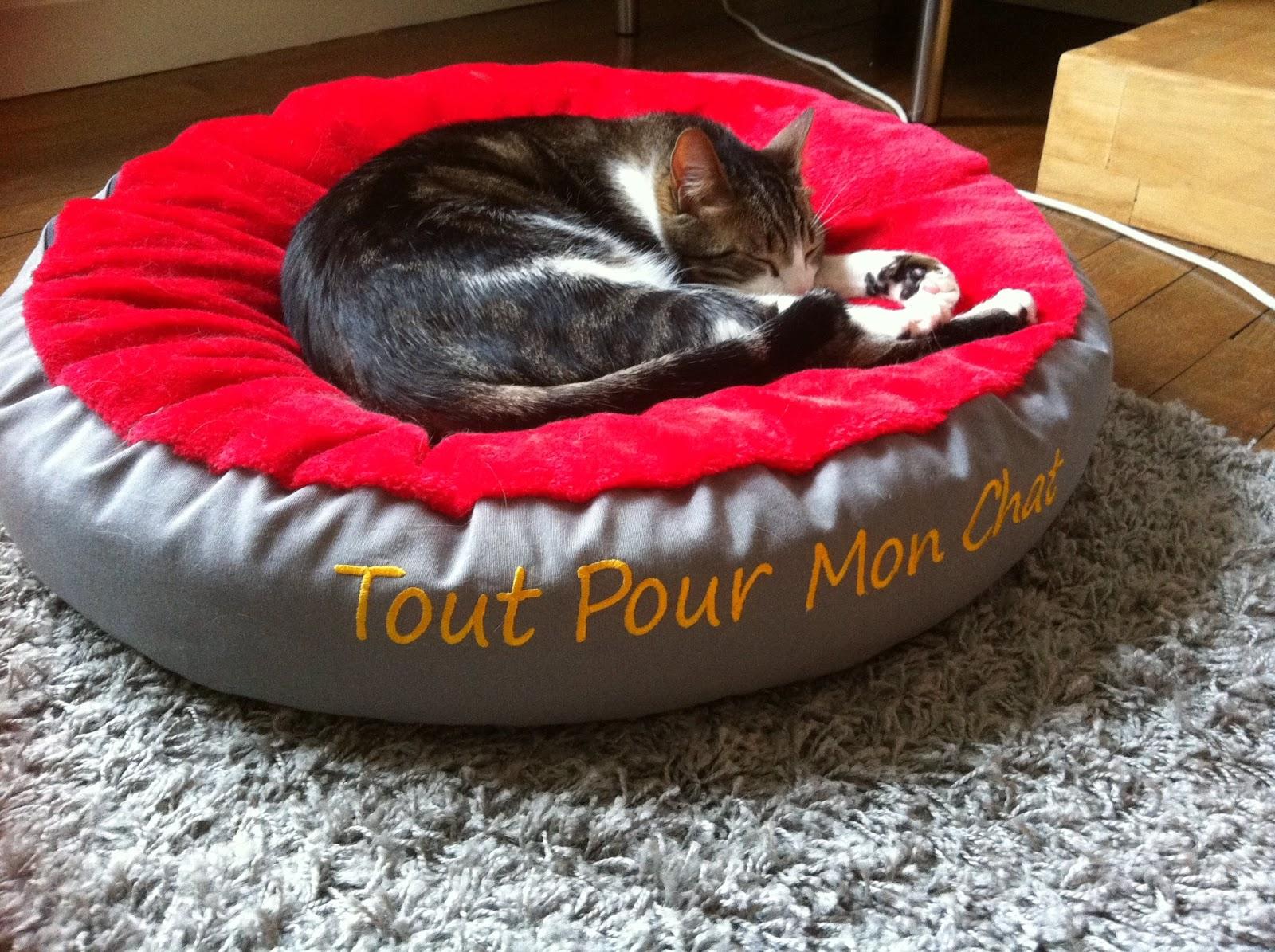 tout pour mon chat le super coussin pour chat mowgly 39 s. Black Bedroom Furniture Sets. Home Design Ideas