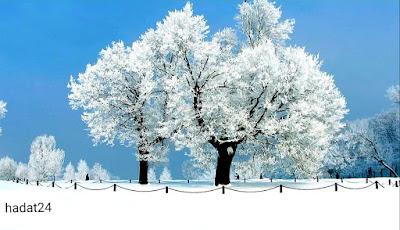 إحتياطات صحية في فصل الشتاء