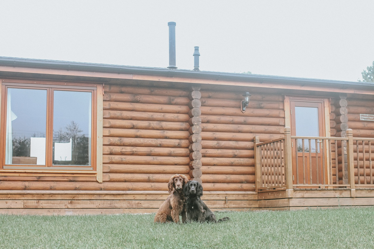 Foxton Locks Lodges with Dogs