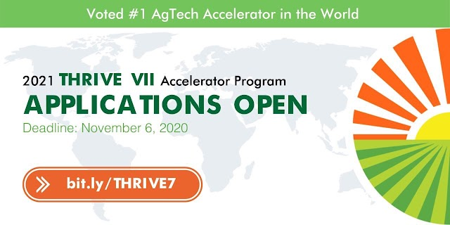 THRIVE VII Accelerator Program 2021 for Seed-stage Startups