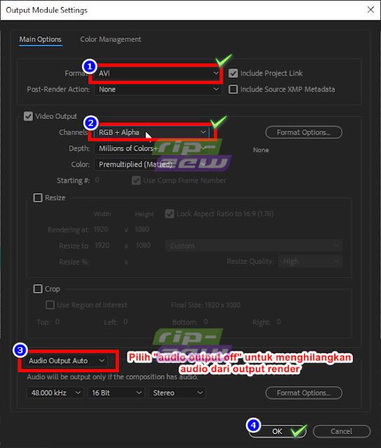 Konfigurasi Video Rendering