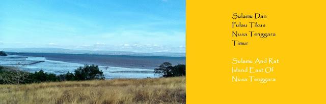http://ketutrudi.blogspot.co.id/2018/02/berwisata-ke-sulamu-dan-melihat-pulau.html