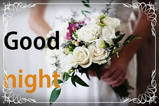 good night white rose