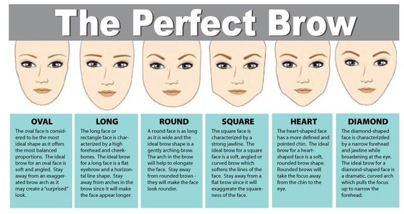 How To Shape Your Eyebrows Perfectly Pudgy Thoughts