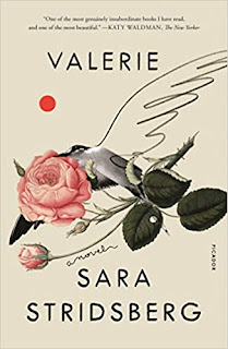 Valerie: or, The Faculty of Dreams: A Novel by Sara Stridsberg