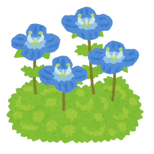 オオイヌノフグリのイラスト(花)   かわいいフリー素材集 いらすとや
