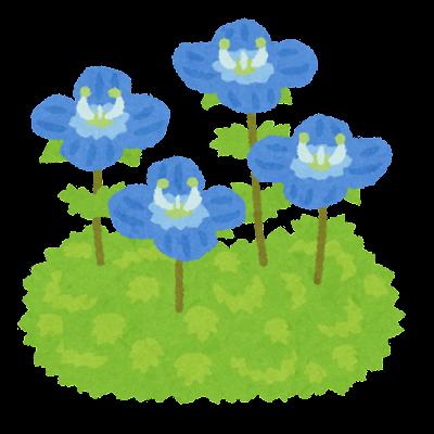 オオイヌノフグリのイラスト(花)