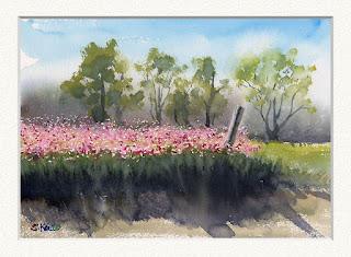 水彩画「コスモス畑」