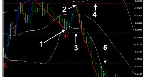 Forex trading system that work