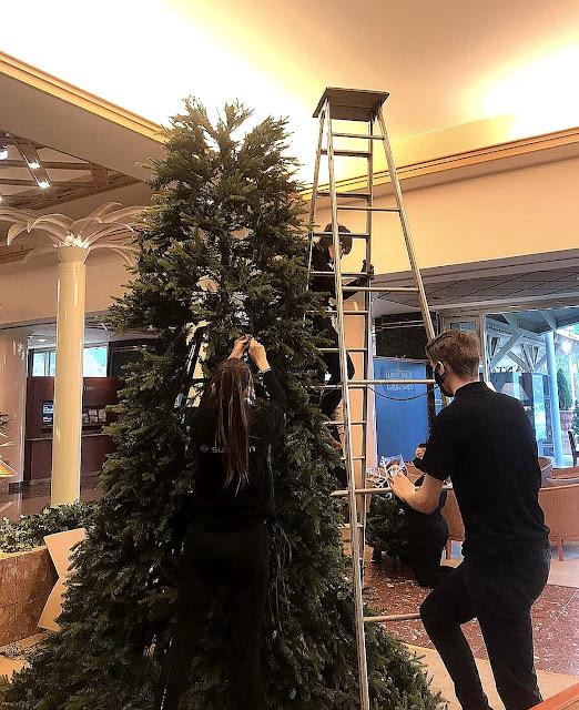 Koristelematon keskeneräinen aulan joulukuusi