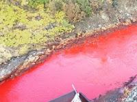 Misteri Sungai di Rusia Berwarna Merah Darah