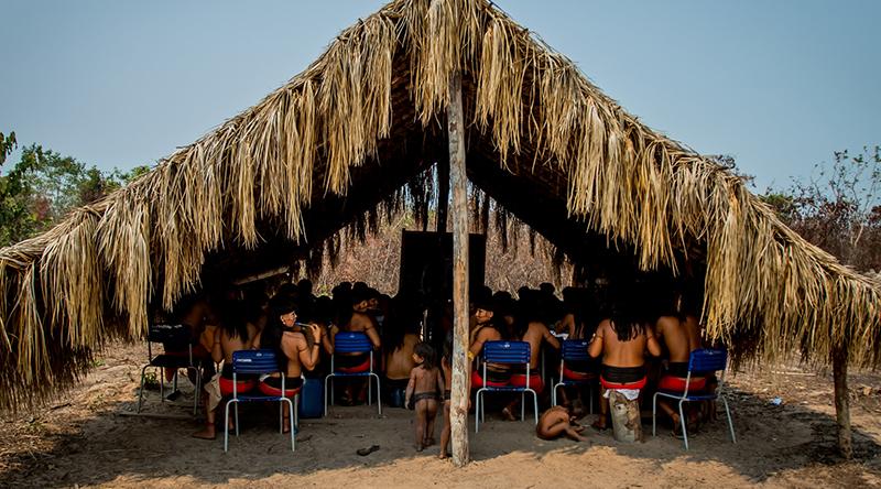 Ministério Público denuncia 5 invasores de terra indígena por crime ambiental no Pará