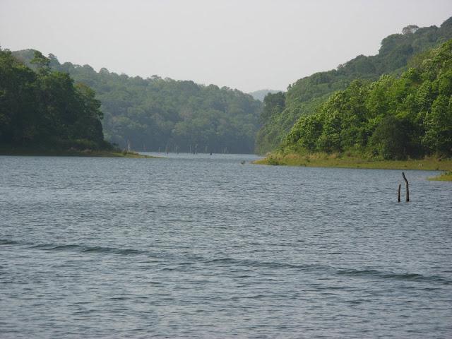 Thekkady Lake - Idukki, Kerala