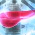O que você precisa saber sobre resistência à insulina