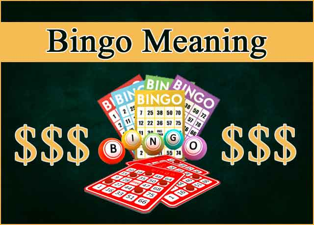 bingo meaning and history
