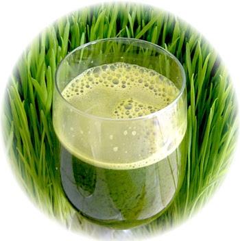 Weizengrassaft+Weizengras+Saft+dieumsteiger.blogspot.com+