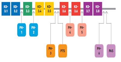 gambar contoh penilaian k13 dalam satu semester
