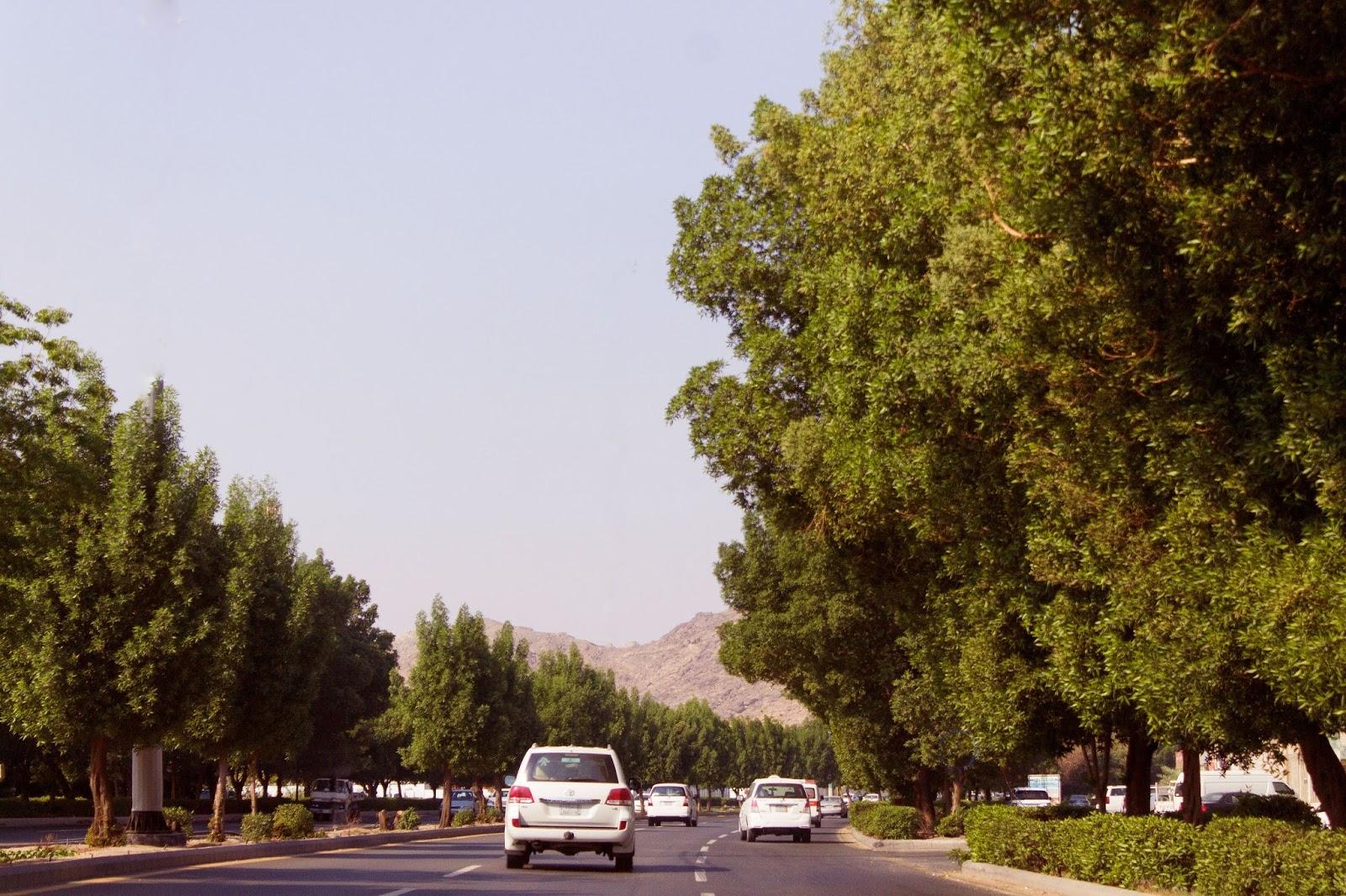 City Al Taif Expat life in taif