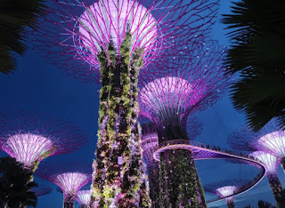 Supertree Groove. Gardens by the Bay o Jardines de la Bahía, Singapur o Singapore.