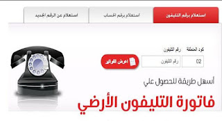 رابط الاستعلام عن فاتورة التليفون الأرضي شهر يناير 2019 عبر رابط موقع شركة المصرية للاتصالات Telecom Egypt