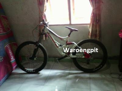 Jual Sepeda DH Downhill Bekas bagus Adrenaline Agent DH 2.0 Bekas -Waroengpit