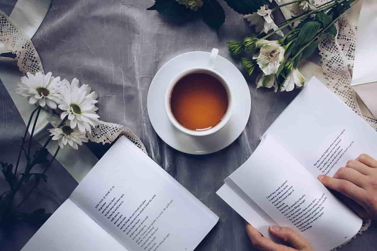 Pengertian Puisi dan Unsur-unsur Pembentuk Puisi