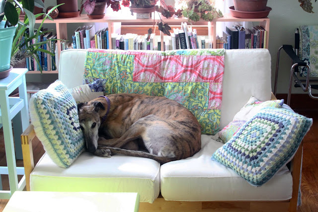greyhounds, rescued greyhounds, Anne Butera, My Giant Strawberry