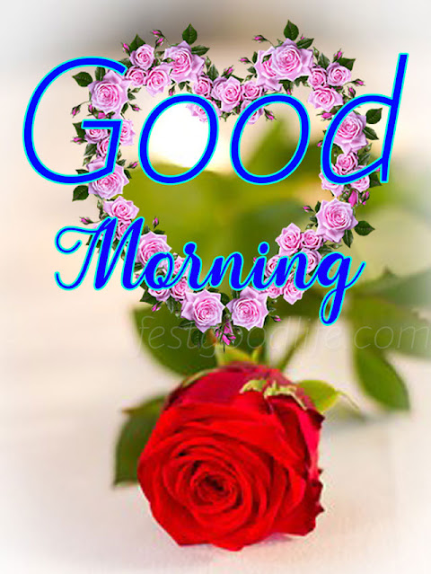 rose wish gud  morning images with cute rose flower
