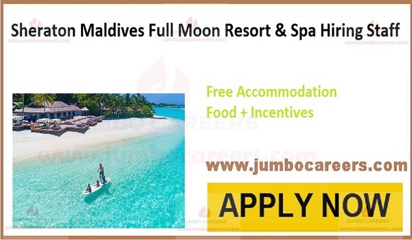 Maldive jobs with salary and benefits,