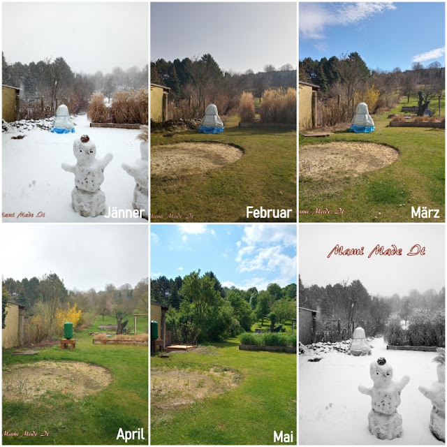 12tel Blick 2021 - Mai Collage