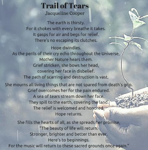 Trail Of Tears;