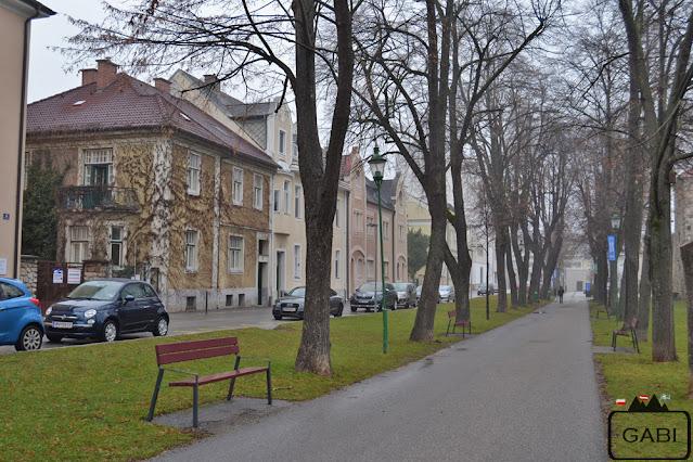 Austria Wiener Neustadt