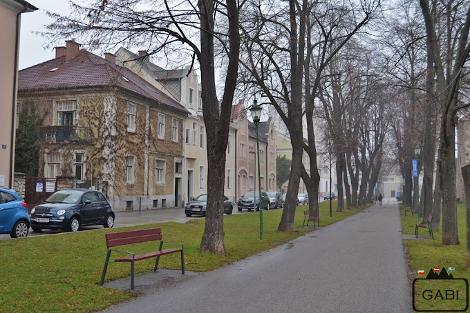 Wiener Neustadt we mgle