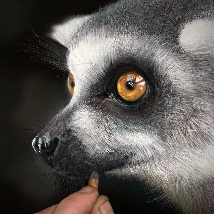 03-Lemur-Paul-Miller-www-designstack-co
