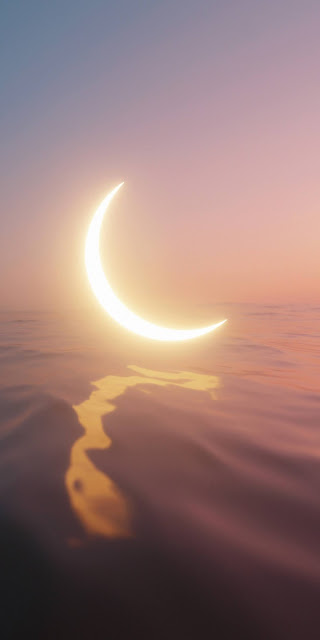 Crescent moon in the lake