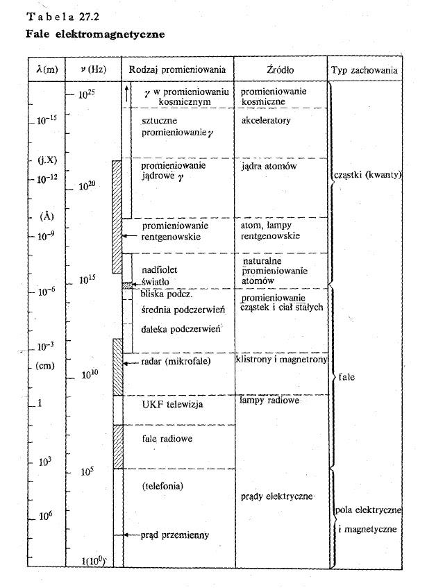 Czym jest datowanie radioaktywne w biologii