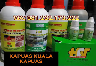Jual SOC HCS, KINGMASTER, BIOPOWER Siap Kirim Kapuas Kuala Kapuas