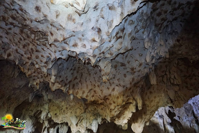 cave is favorable for ecotourism purposes