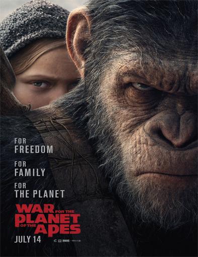 Ver La guerra del Planeta de los Simios (2017) Online