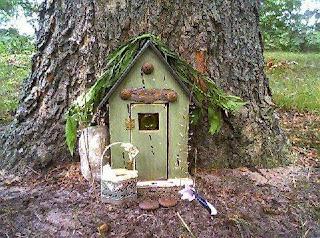Fenomena Pintu Peri di Hutan Ajaib Somerset