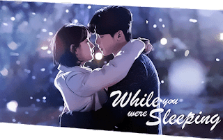 Sinopsis While You Were Sleeping Episode 13