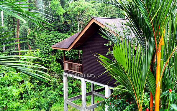Chalet at My Nature Resort Sepilok