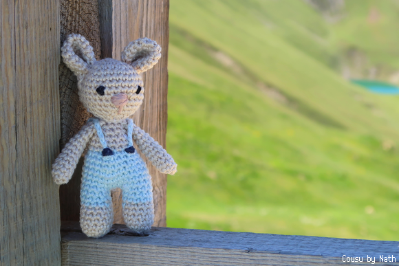 Tutoriel Lapin de printemps 🌸🐰 - Cat's Créa Crochet | 387x580