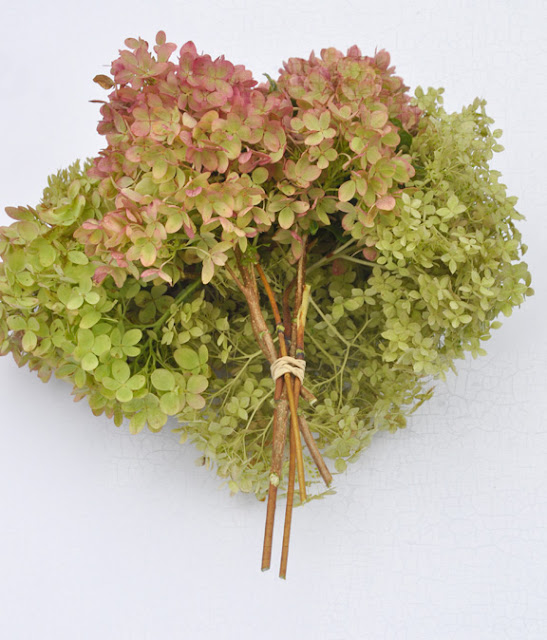 Dried Hydrangea Arrangements: Three Dogs In A Garden: Simple Projects With Dried Hydrangeas