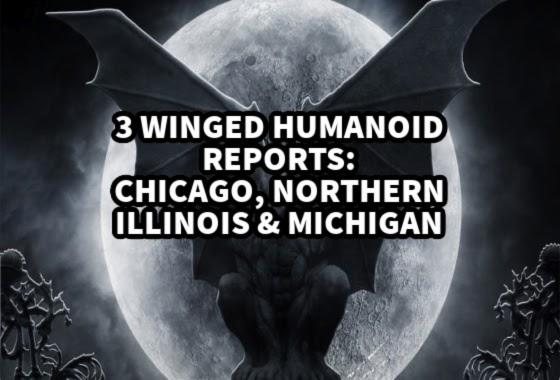 3 Winged Humanoid Reports - Chicago, Northern Illinois & Michigan