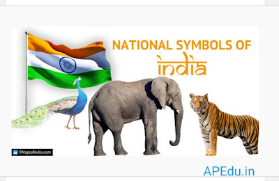 National symbols of India depict the country's image and have been chosen very carefully.